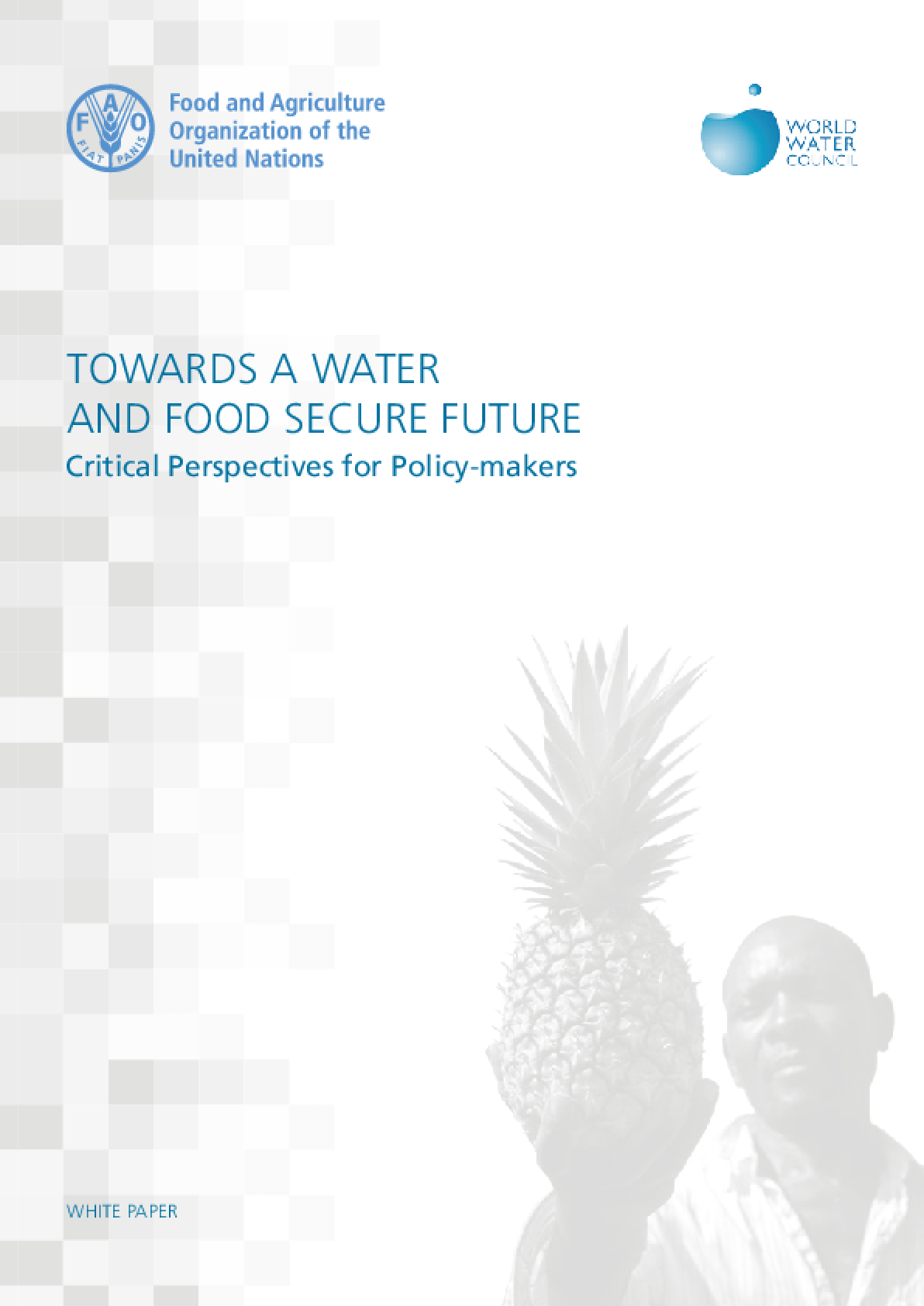 Towards A Water and Food Secure Future: Critical Perspectives for Policy-makers