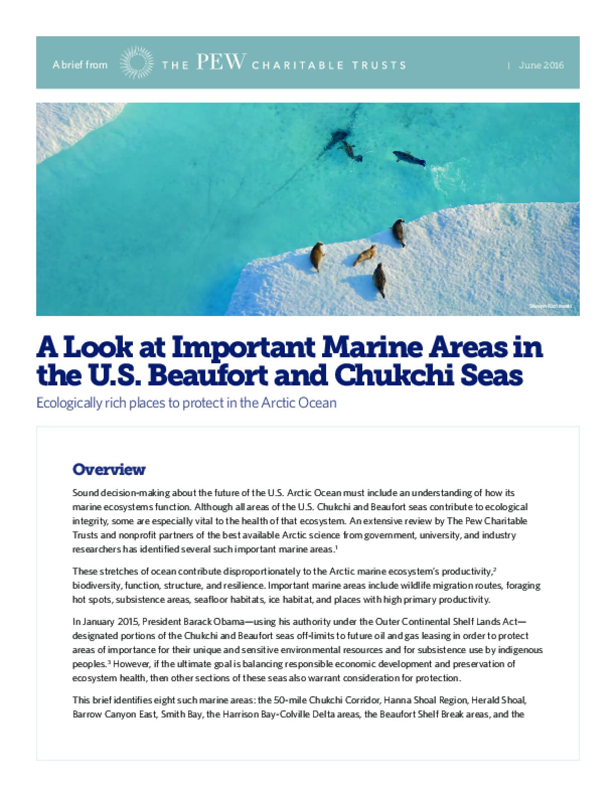 A Look at Important Marine Areas in the U.S. Beaufort and Chukchi Seas: Ecologically rich places to protect in the Arctic Ocean