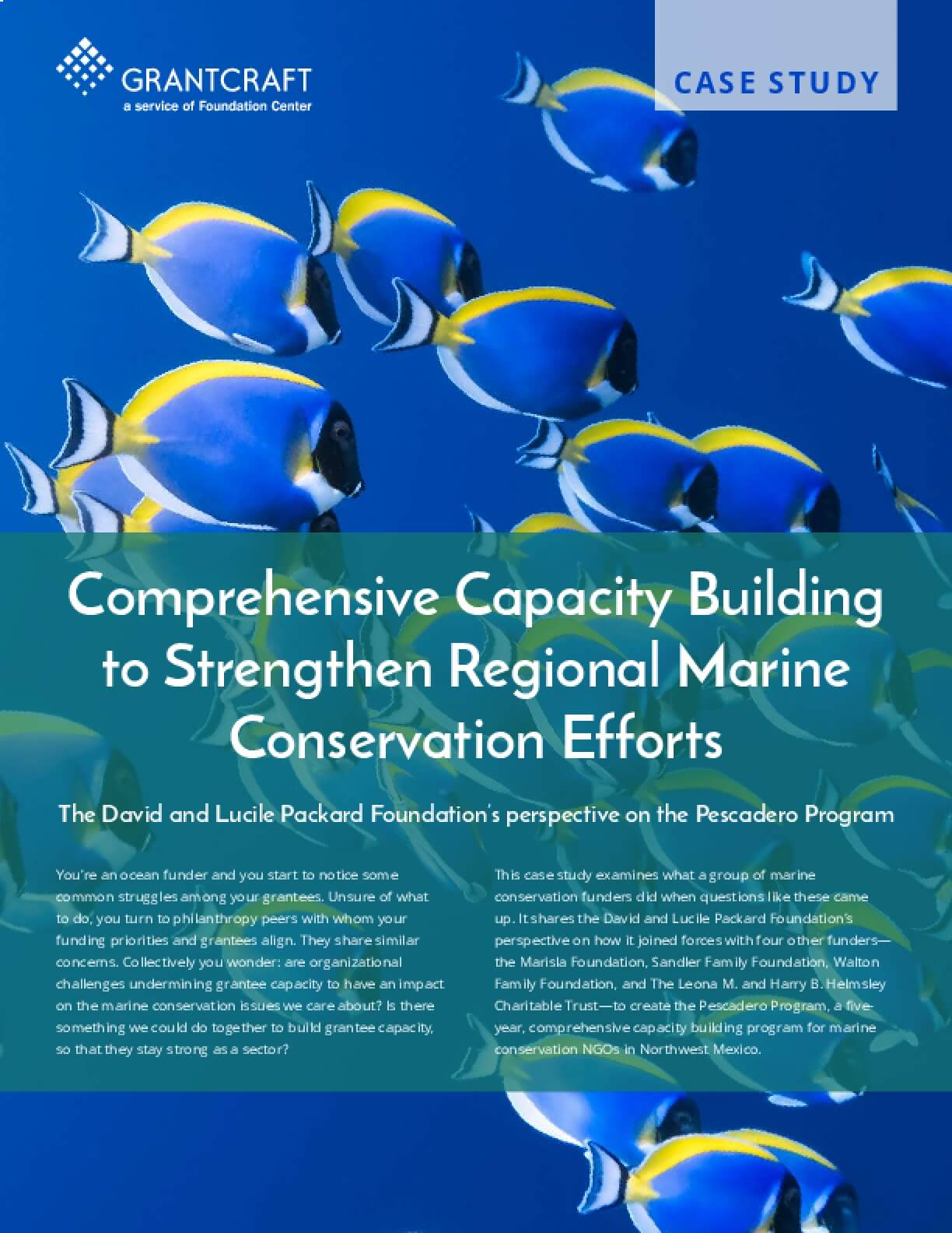 Comprehensive Capacity Building to Strengthen Regional Marine Conservation Efforts