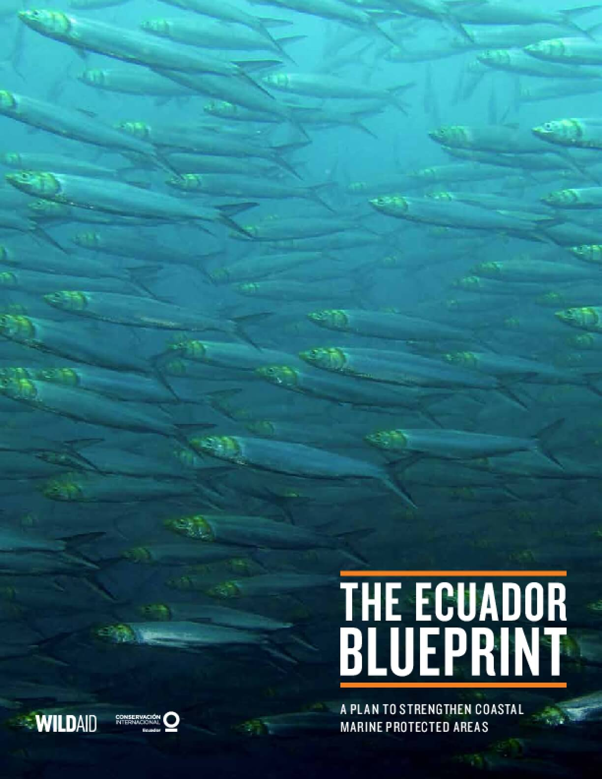 The Ecuador Blueprint: A Plan to Strengthen Coastal Marine Protected Areas